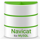 MySQL管理器(phpMyAdmin)