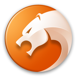 金山猎豹浏览器软件v6.5.115.18629 正式版