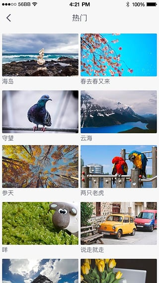 搜狐视频tv版apk