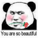 You are so beautiful撩妹表情包 高清无水印