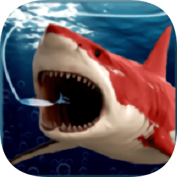 垂钓鲨鱼游戏 v1.0 安卓版