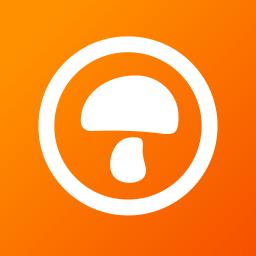 蘑菇租房app