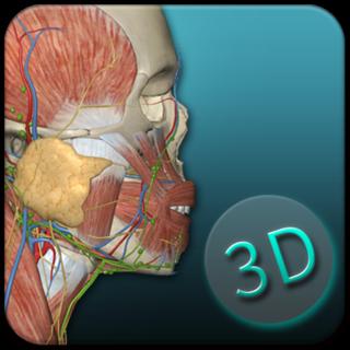 2018版人体解剖学图谱app