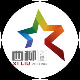 西柳之星电商平台v2.0.0 安卓版
