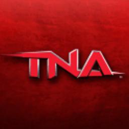tna格斗大赛中文版 v1.0.1 安卓版