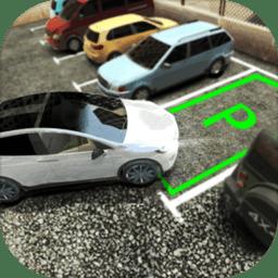 真实停车高手手游 v1.0.0 安卓版