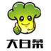 大白菜u盘启动装机版