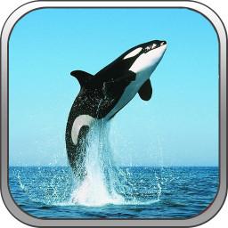 我的世界海洋公园vr版 v5.8 安卓版