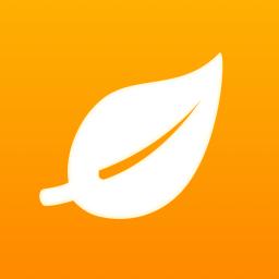 凤凰巢官方版 v3.3.0 安卓版