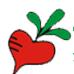 萝卜家园xp系统