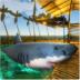 木筏求生记游戏 v1.0.1 安卓中文版