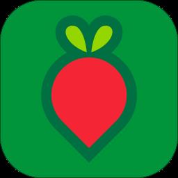 叮咚买菜手机版v9.7.4 安卓最新版