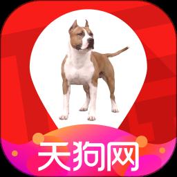 天狗网app