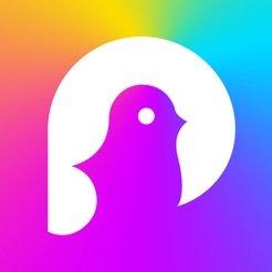pokekara appv1.1.8 安卓版