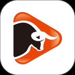 抖牛短视频appv1.3 安卓版