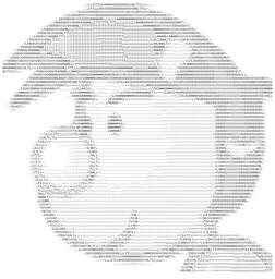 代码图片视频Appv4.0 安卓