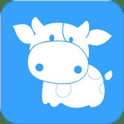 团家政手机版v1.1.1 安卓版