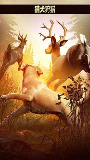 猎鹿人2018无限金币版 v5.1.7 安卓版