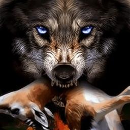 狼的一生游戏中文版v1.6 安