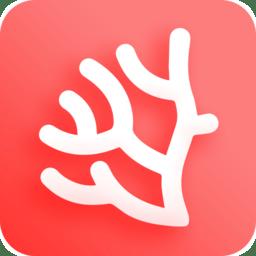 珊瑚文学手机版