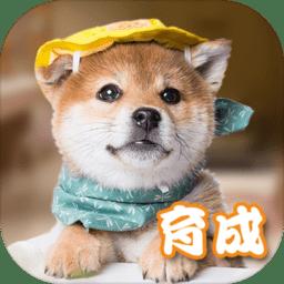 元气小狗内购破解版 v1.0 安卓版