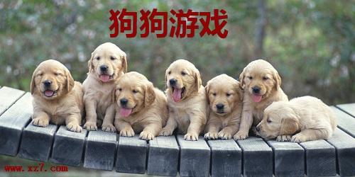 狗狗188bet手机版网址大全188bet网址_关于狗狗的188bet手机版网址_狗狗188bet手机版网址免费188bet网址