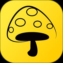 蘑菇丁苹果版v3.2.9 iphone