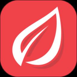 香聘appv3.0.0.2 安卓版