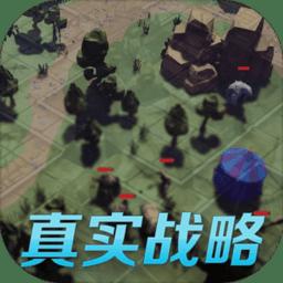 真实战略手游v1.0.2 安卓版
