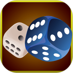 玩转骰子app