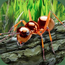 蚂蚁模拟器中文破解版 v1.01 安卓版