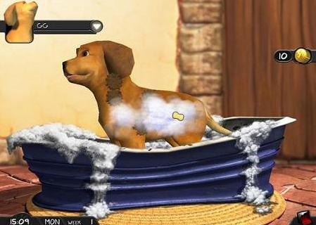 疯狂宠物2免费游戏
