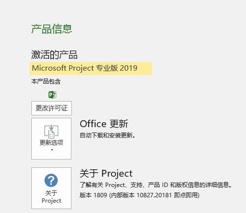 project2019软件