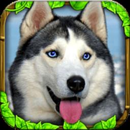 流浪狗模拟器中文版 v2.0 安卓版