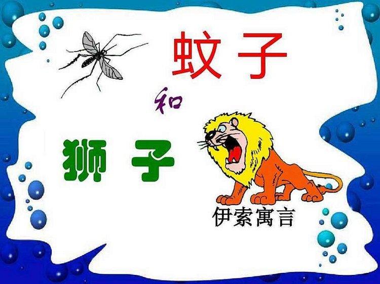 蚊子和狮子ppt