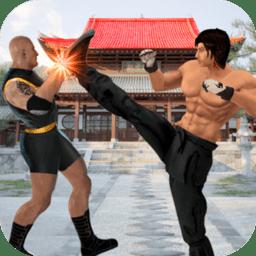 功夫冠军格斗手游 v2.0 安卓版