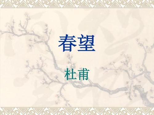 春望教学ppt课件 人教版