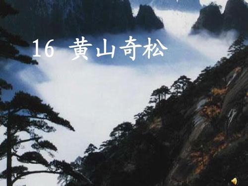 黄山奇松ppt课件