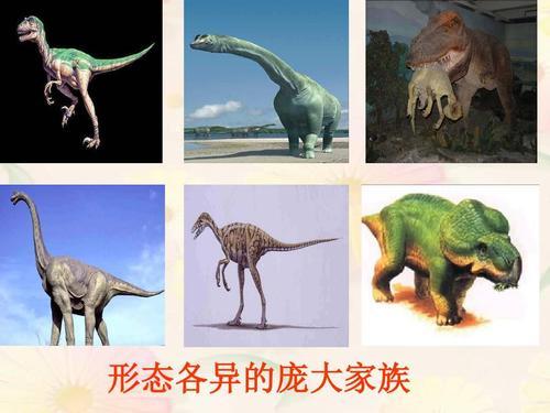 飞向蓝天的恐龙教案 人教版