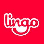 lingo官方版 v18 最新版