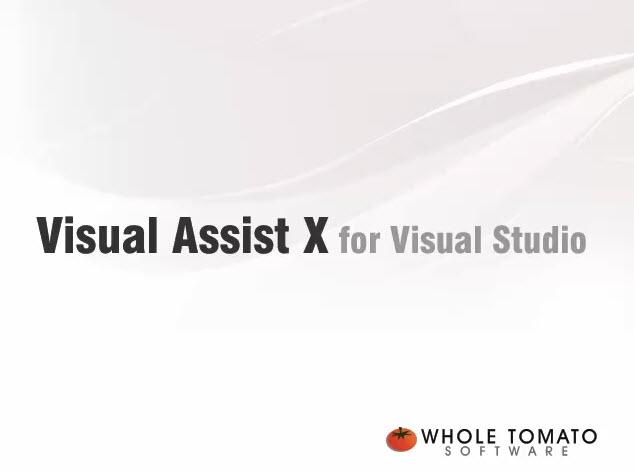 visual assist x软件