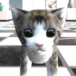 猫咪在密室手机游戏