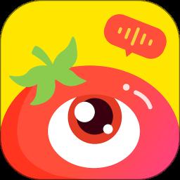 番茄派对app v1.1.8 安卓版