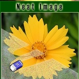 neat image汉化版