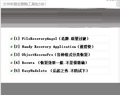 文件恢复反删除工具包5合1免费版