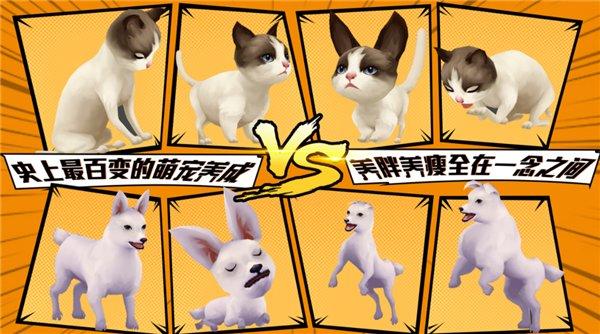 宠物天团游戏