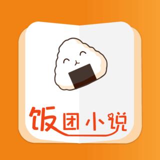 饭团小说手机版