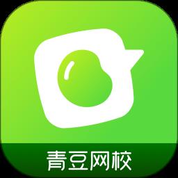 青豆网校app