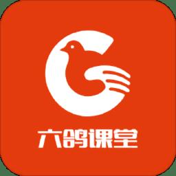 六鸽课堂手机版 v1.3 安卓版