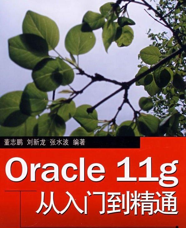 oracle11g从入门到精通pdf